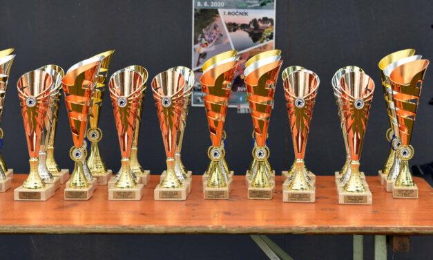 Průběžné pořadí v poháru ČSDL